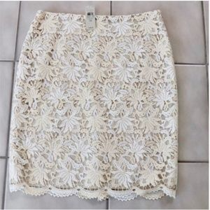 Ann Taylor NWT Lace Lined Skirt